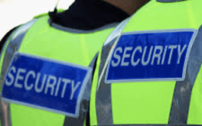 Ways on How a Professional Security Firm Can Help Your Business